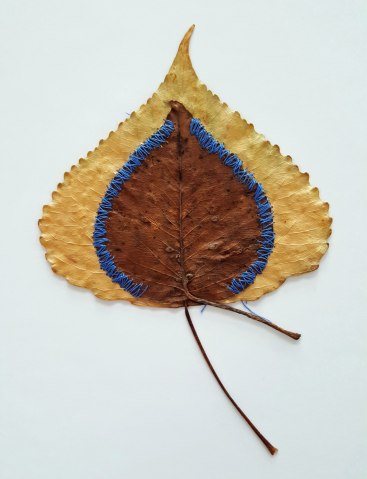 "Judith Brotman, Natural Selection, 2005, Mixed media, 6 ½ x 4 ¼"" , Gift of Chuck Thurow, Chicago IL"