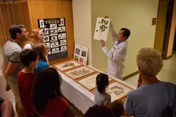 Dr. Hong Qian demonstrates how plant species are preserved.